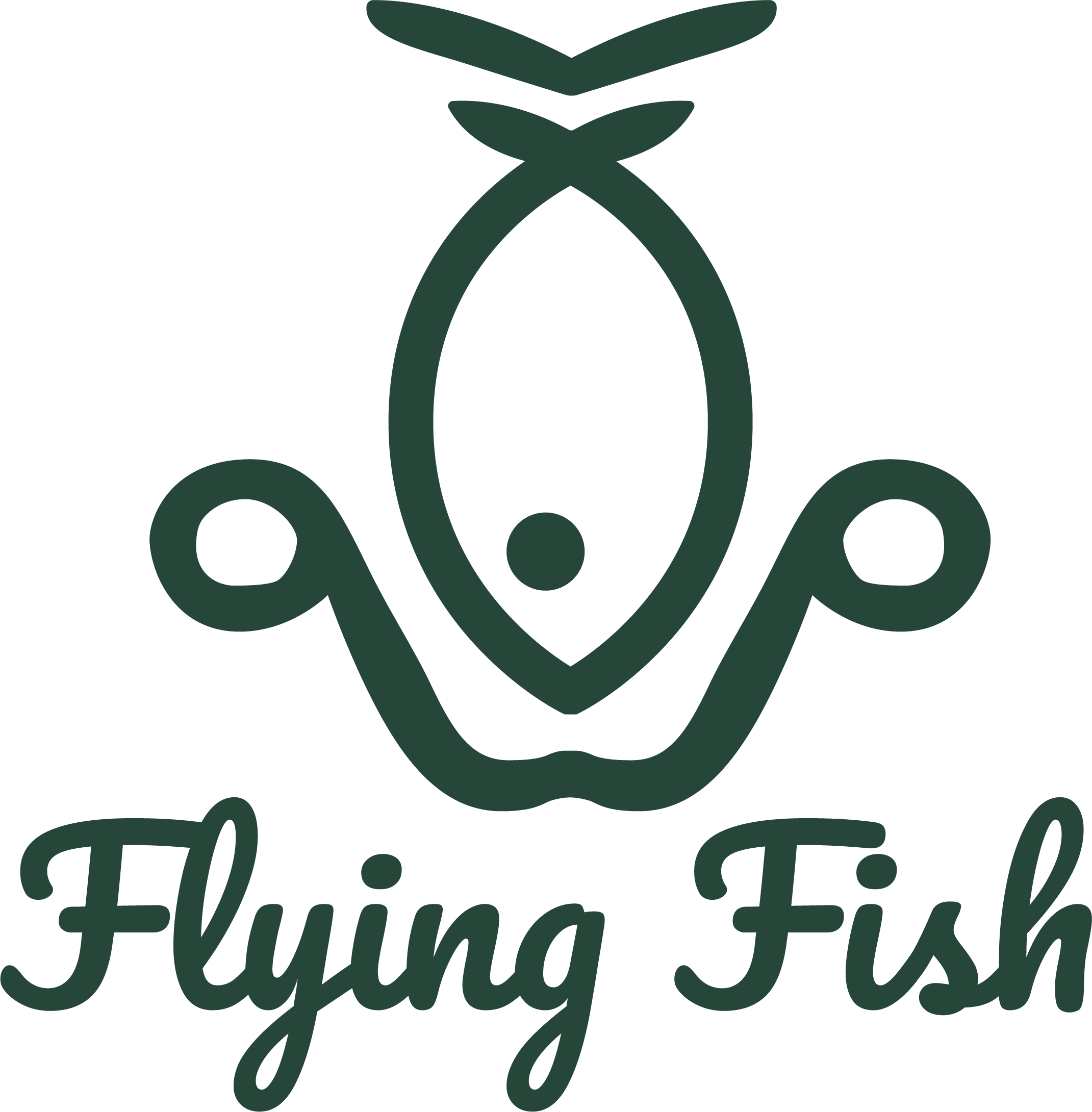 Flying Fish Foils